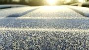 19th Feb 2016 - A frosty start
