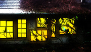 13th Feb 2016 - golden windows