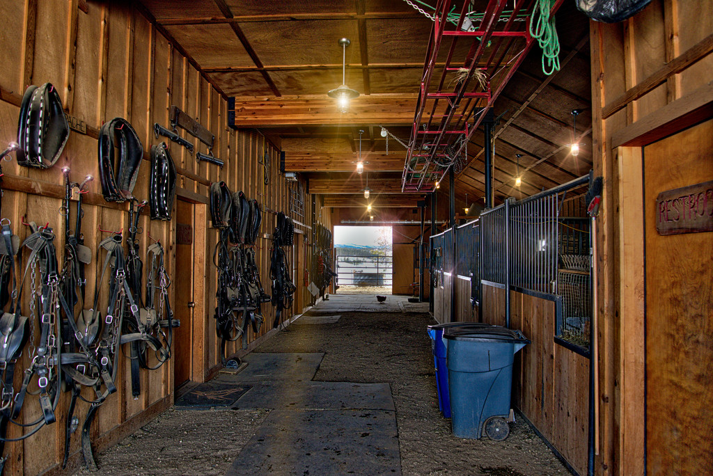 Inside the DTR stables by mikegifford