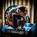 Kodak Kat by berelaxed