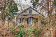 20th Feb 2016 - Abandoned House In The Woods
