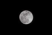 22nd Feb 2016 - Full moon