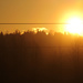 Morning Sunrise by nanderson