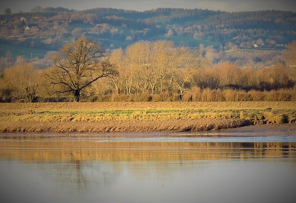 The other side of the River Severn by flowerfairyann