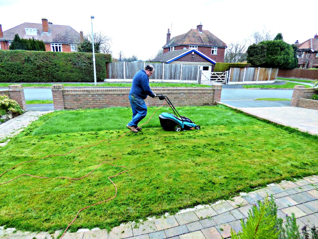 The first mow of the year   by beryl