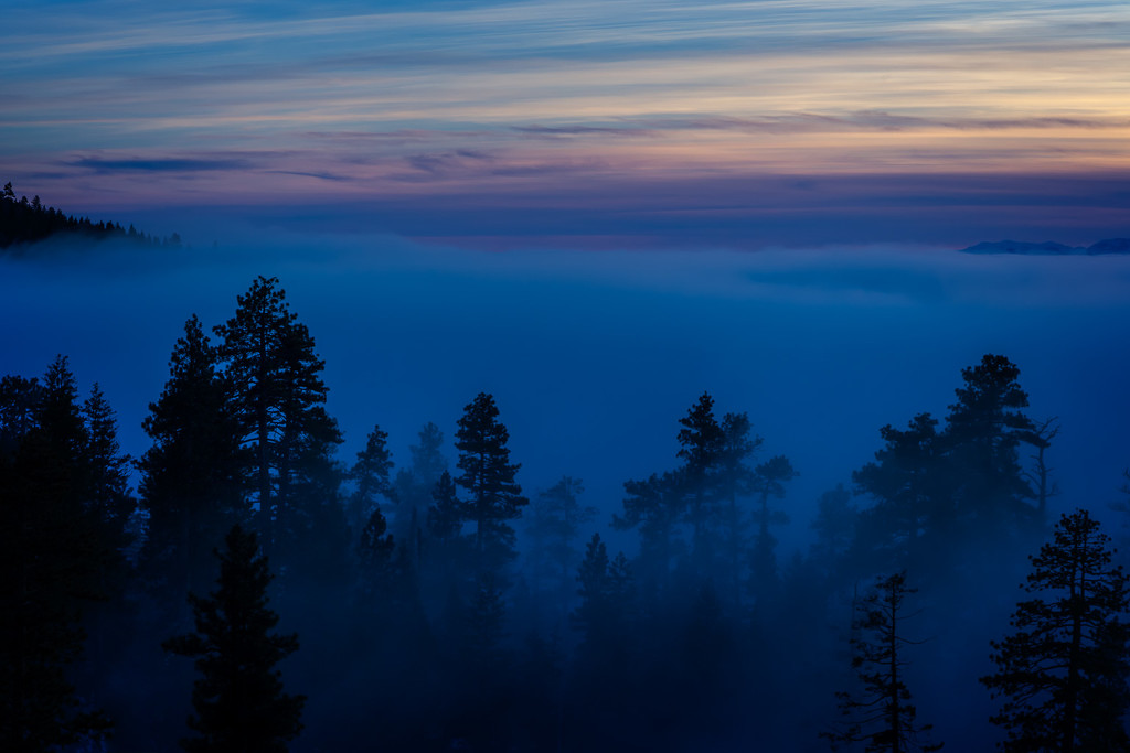 When the Fog Rolls In by pflaume