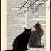 Feline by Weezilou