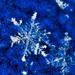 snowflake by dianen