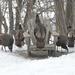Backyard Visitors by frantackaberry