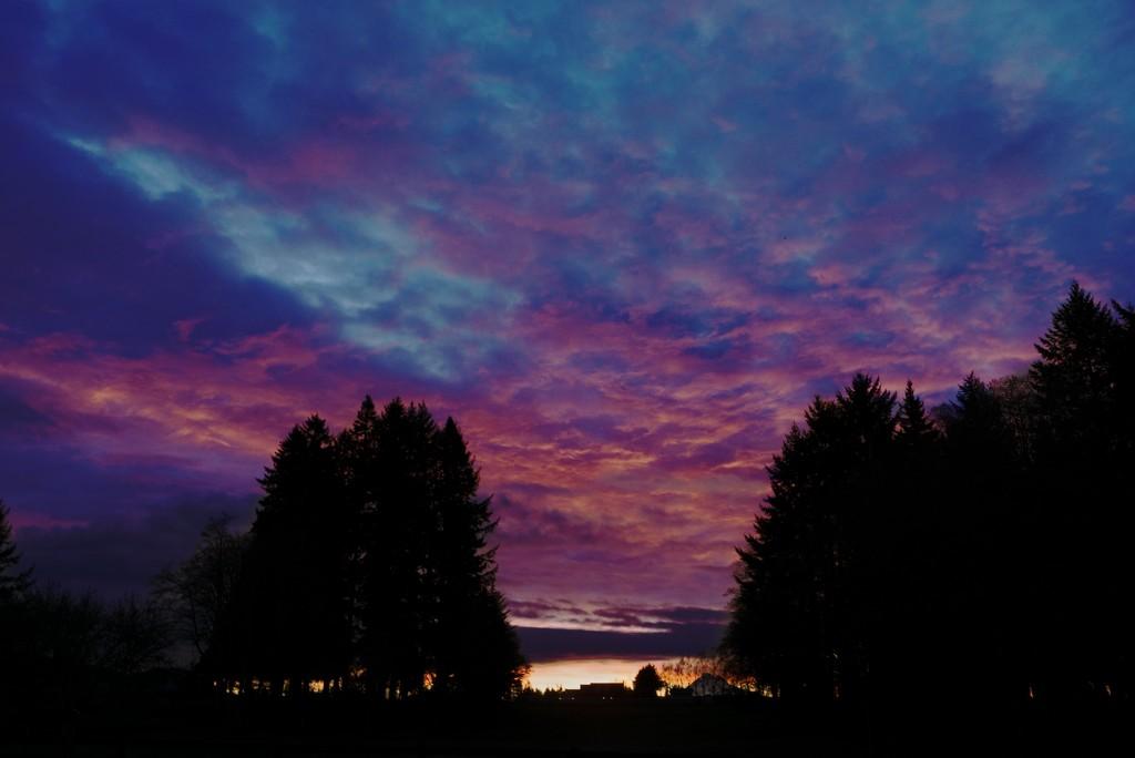 sunrise 3-8-16 by teiko