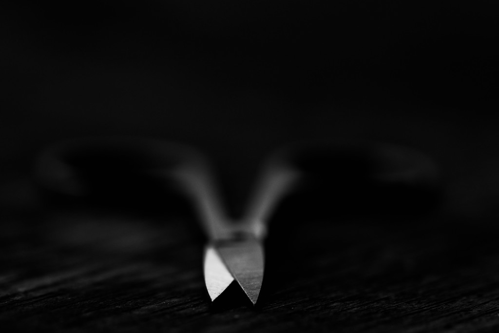 Sharp  by mzzhope