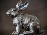 17th Mar 2016 - Not Quite the Velveteen Rabbit