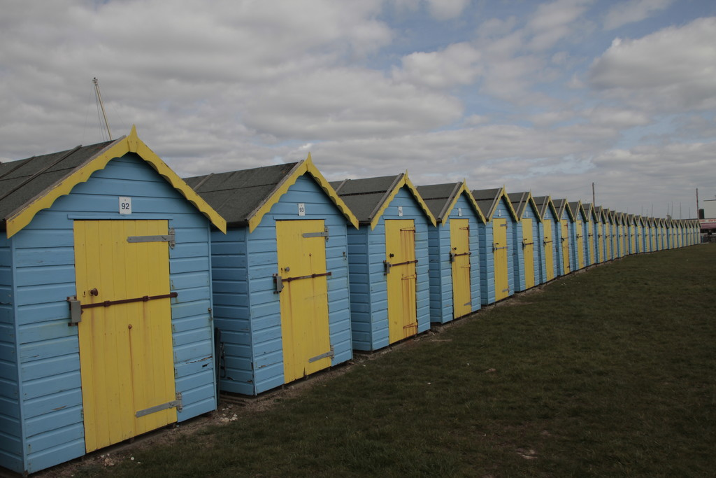 Blue and Yellow by davemockford