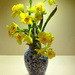 Daffodil,Narcissus in a blue vase....  by snowy