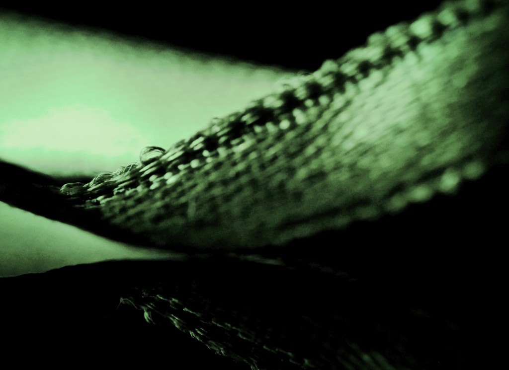 green ribbon  by mzzhope