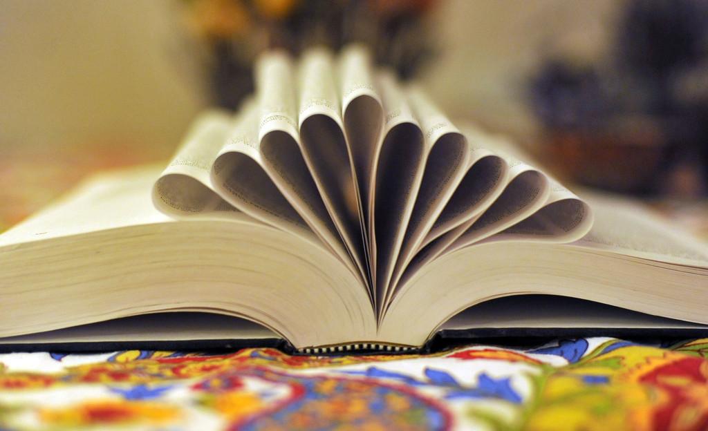 Books 11 by loweygrace