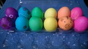 25th Mar 2016 - Rainbow Eggs