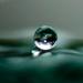 Raindrop by dianen
