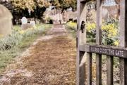 29th Mar 2016 - Walk through the Churchyard but....