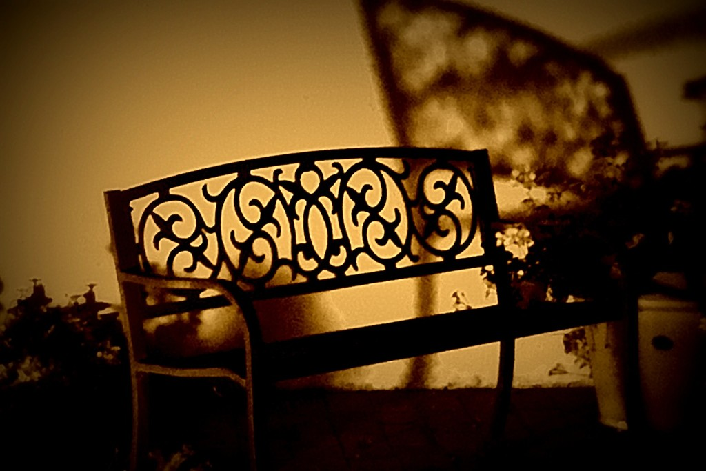 Bench by jaybutterfield