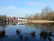 1st Apr 2016 - Gerrards Cross Pond