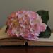 Books 20 by loweygrace