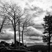 Confession: Loves Dramatic Skies by tracys