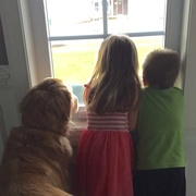 4th Apr 2016 - Waiting for mommy to come home