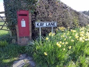 13th Apr 2016 - Lonely Letter Box
