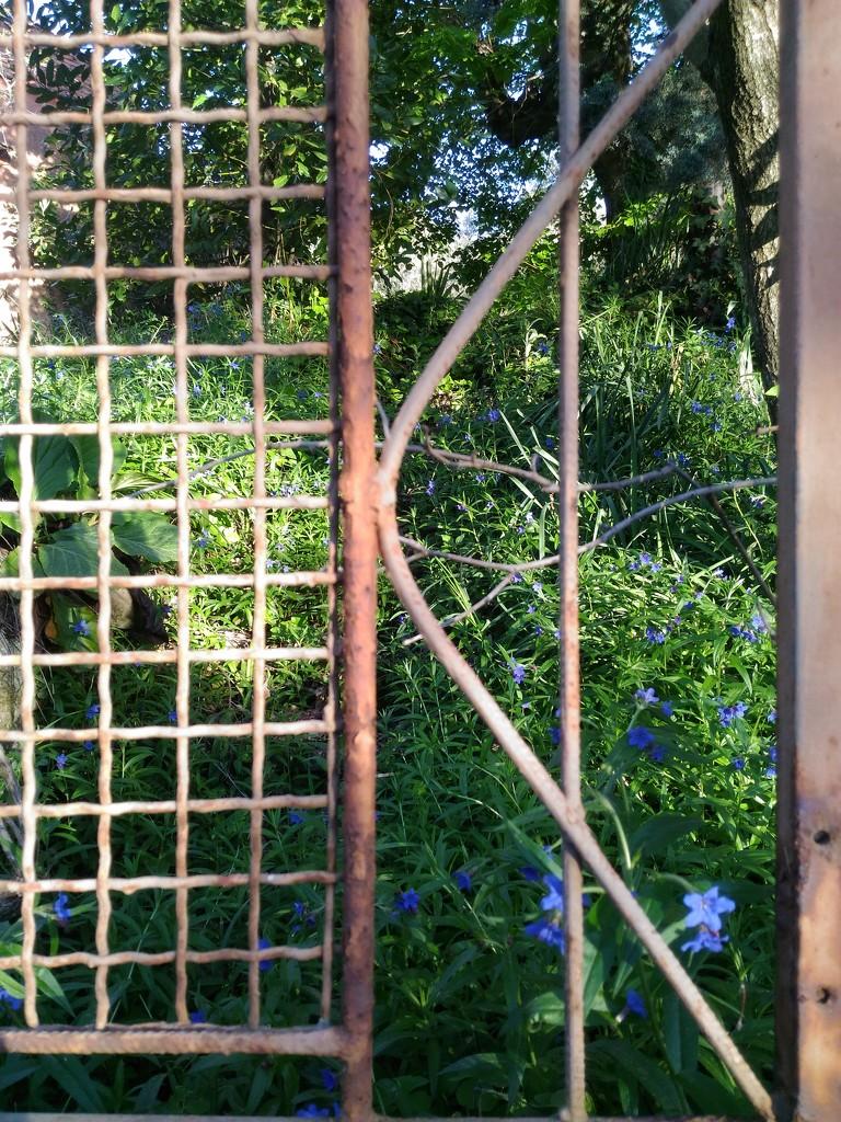 The secret garden... by frappa77