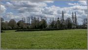 15th Apr 2016 - Across the fields
