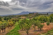 15th Apr 2016 - Somewhere in Tuscany