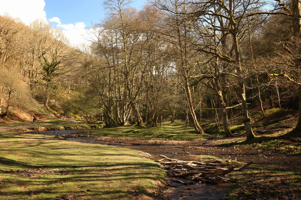 Holford Combe (SOOC) by shepherdmanswife