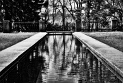 17th Apr 2016 - Black and White Botanical Garden