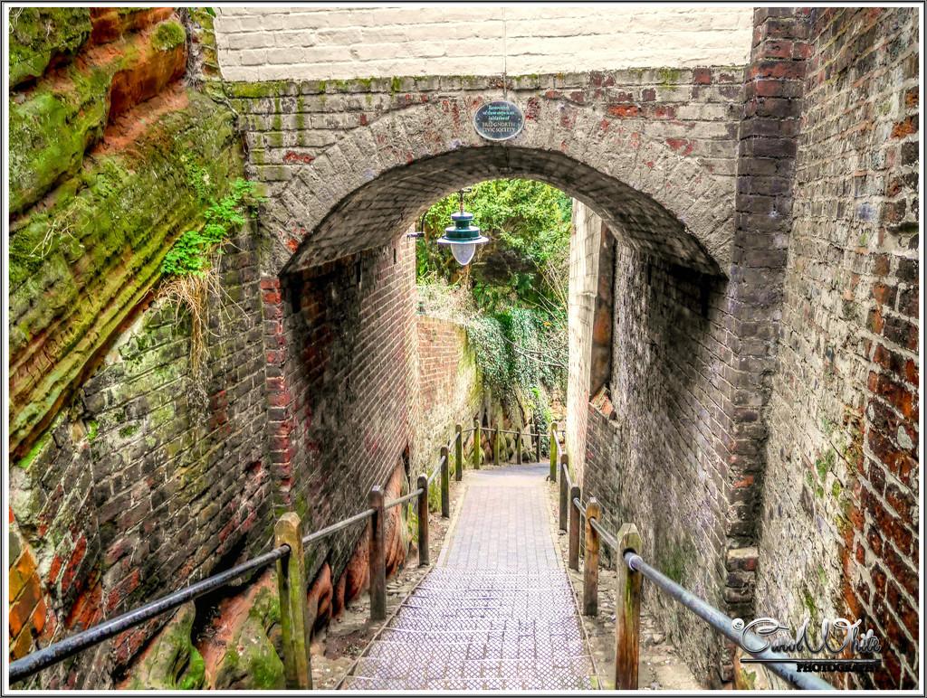 Pathway To The River,Bridgnorth by carolmw