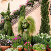 Topiaries by danette