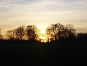 20th Apr 2016 - Glorious Evening