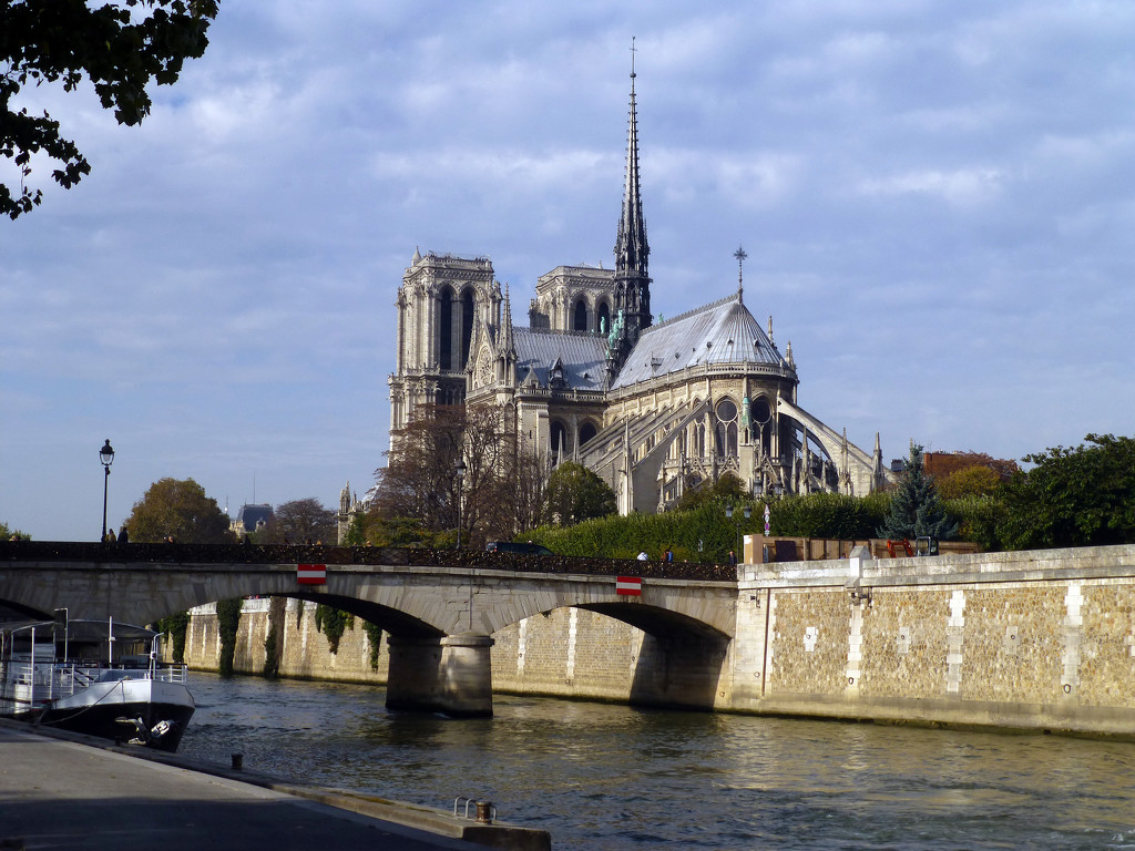 Notre Dame by cmp