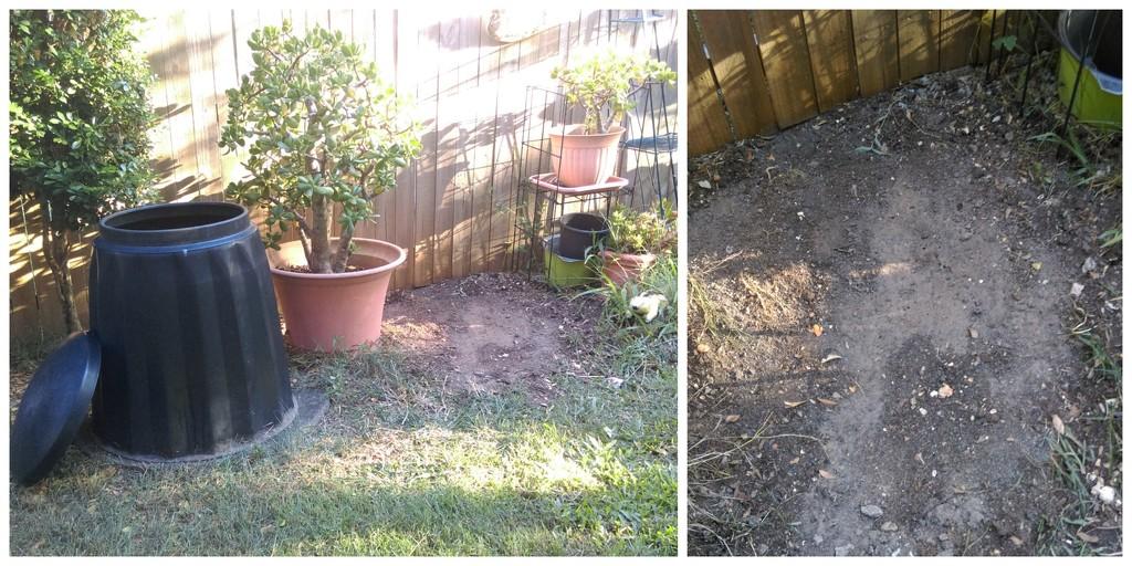 Termite Nest Removal by mozette