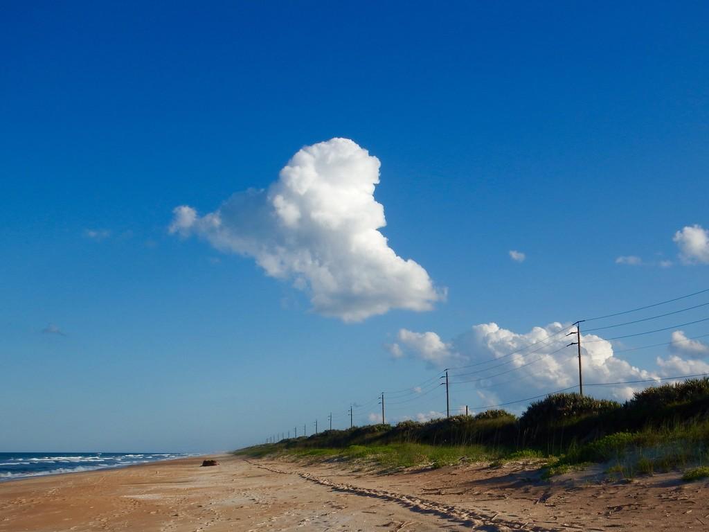 Belated Happy Earth day! by joemuli