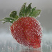 Strawberry Bubbles by phil_howcroft