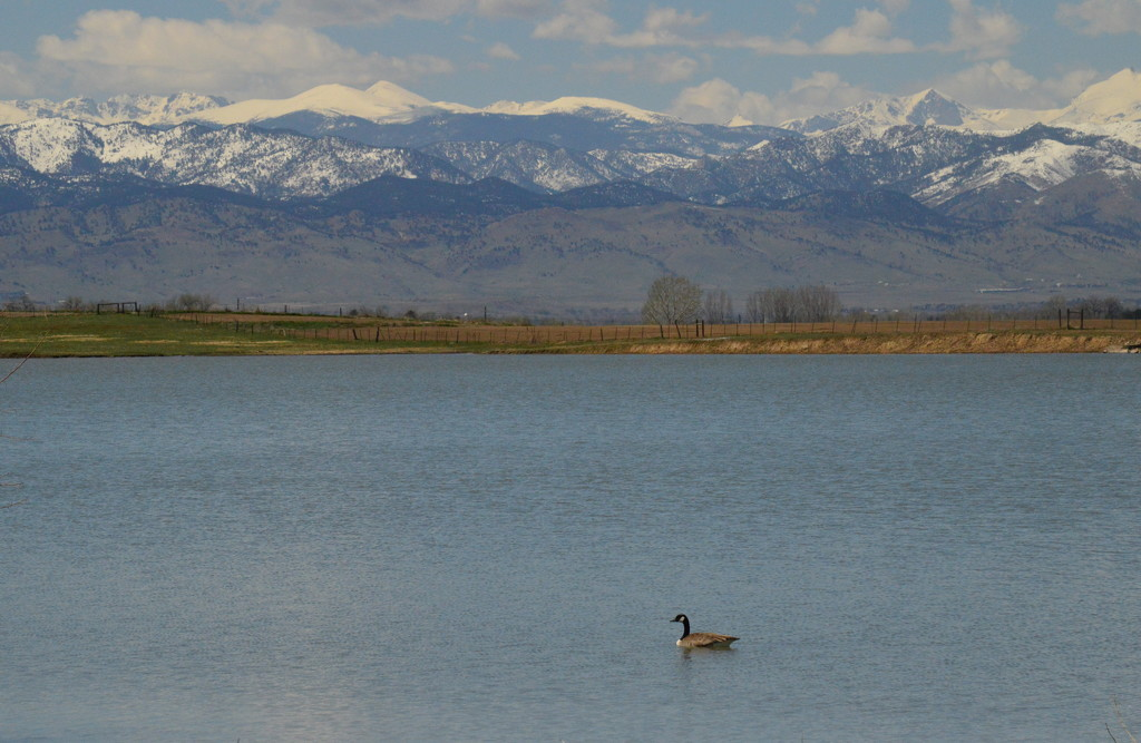 He Owns the Lake by kareenking