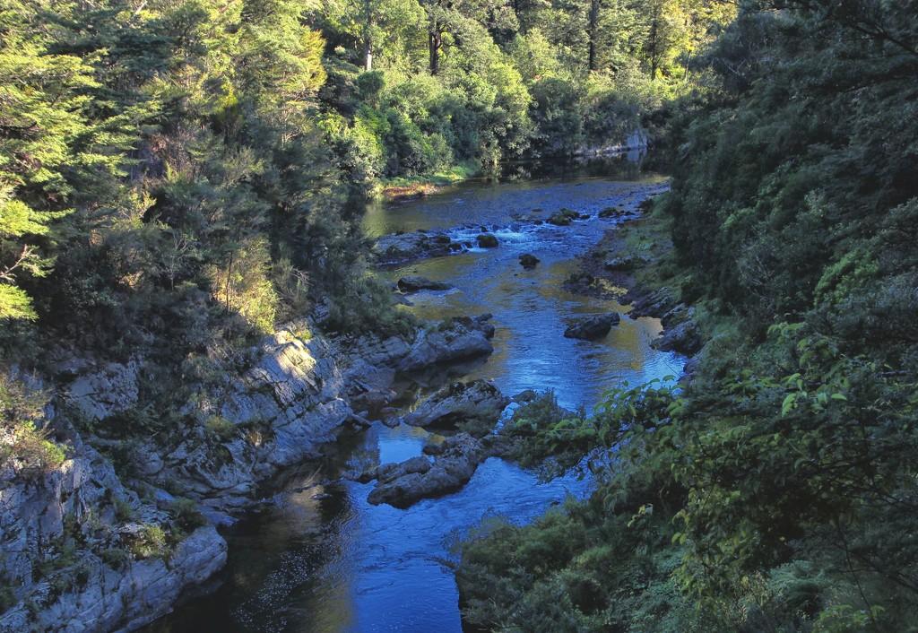 A river of rocks  by kiwinanna