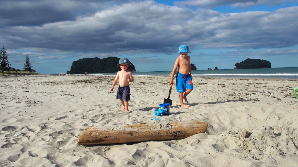 Beach boys by happypat