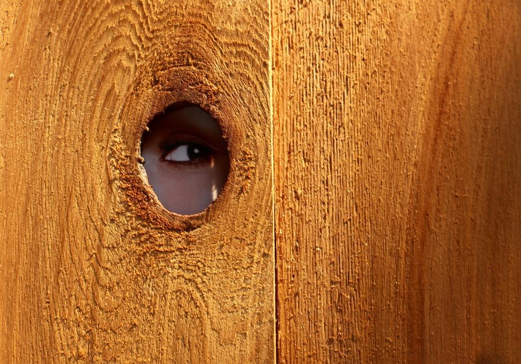 Eye'll be seeing you by joemuli