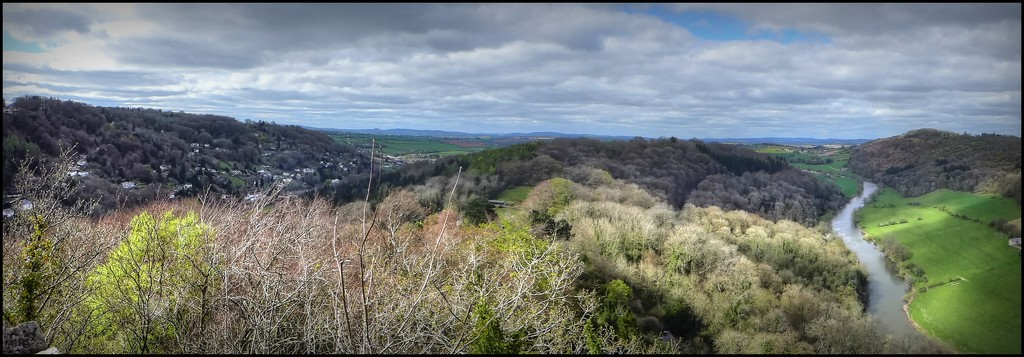 Panorama from Symonds Yat by judithdeacon