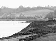 3rd May 2016 - River Severn