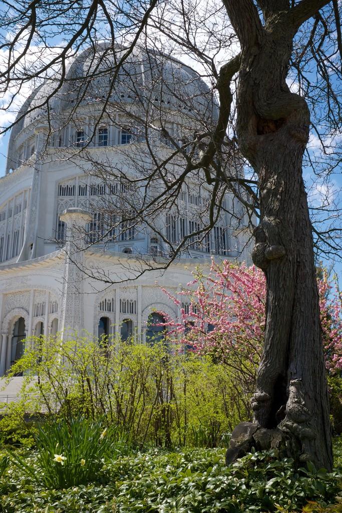 Baha'i Temple in Spring by jyokota