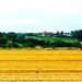 Plain tractor by pistache
