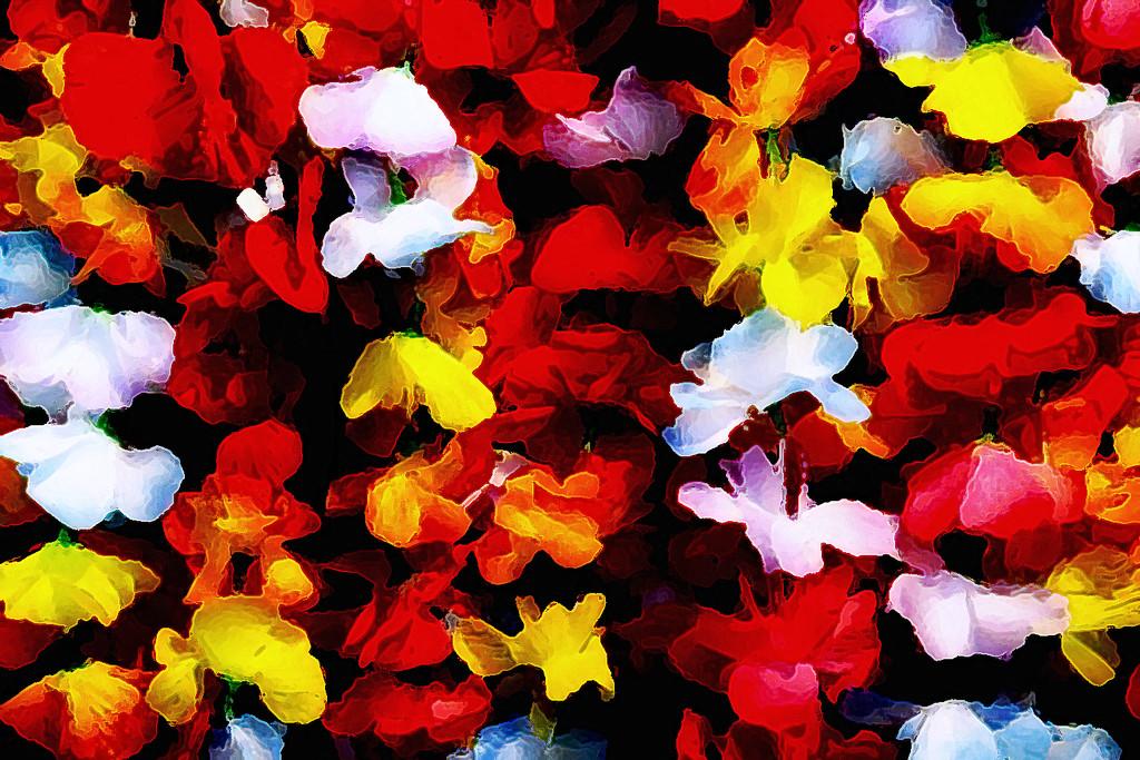 Flower Leis by jaybutterfield